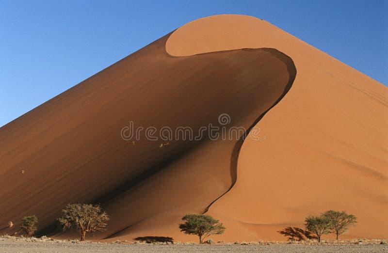 Dunas de areia do deserto de Namíbia Namib imagem de stock royalty free