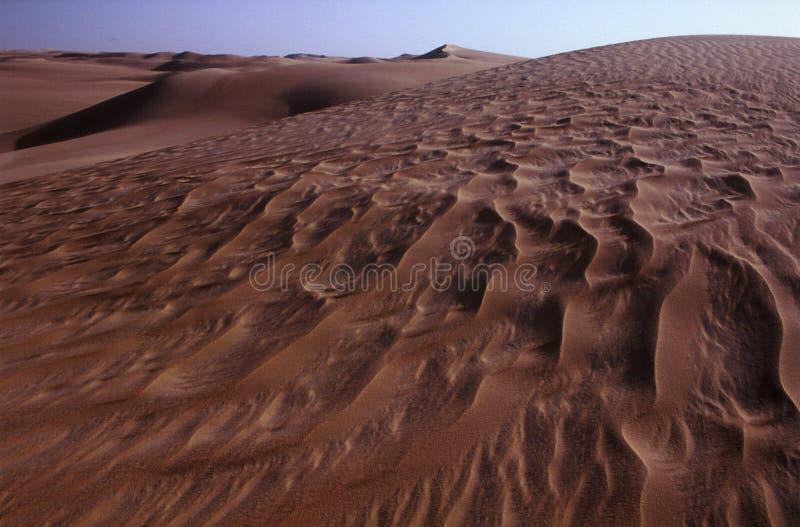 Dunas de areia do deserto ocidental imagens de stock royalty free