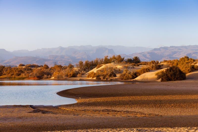 Dunas de areia dos maspalomas fotografia de stock