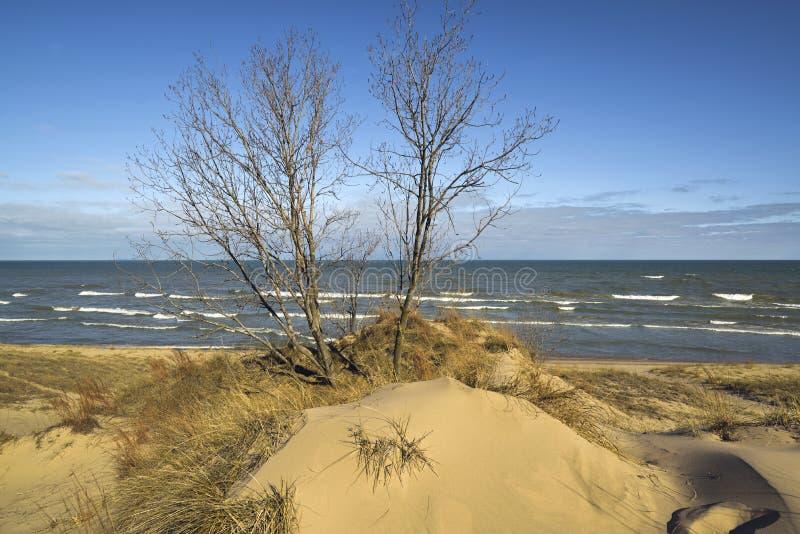 Dunas de areia em costas do Lago Michigan fotografia de stock
