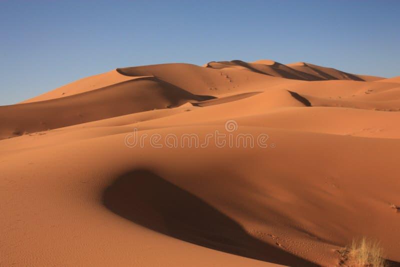 Dunas de areia em Sahara Desert em Merzouga Marrocos foto de stock royalty free