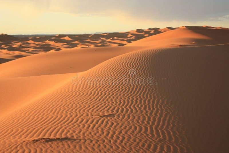 Dunas de areia em Sahara Desert em Merzouga Marrocos imagem de stock