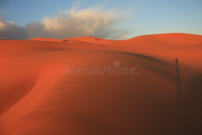 Dunas de areia em Sahara Desert em Merzouga Marrocos fotos de stock