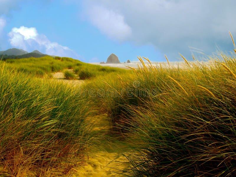 Dunas de areia gramíneas na linha costeira do oceano com rocha do monte de feno foto de stock royalty free