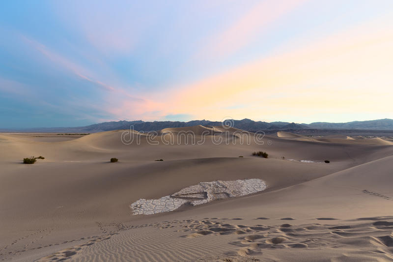 Dunas de areia lisas do Mesquite foto de stock royalty free