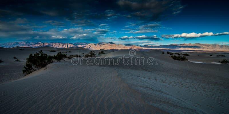 Dunas de areia lisas do Mesquite foto de stock