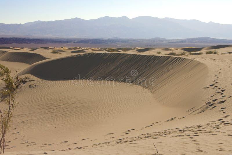Dunas de areia lisas do Mesquite fotografia de stock royalty free