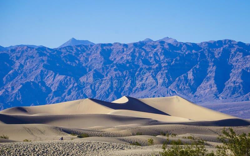 Dunas de areia lisas do Mesquite fotos de stock royalty free