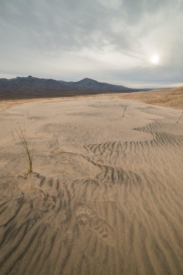 Dunas de areia maciças de Kelso na conserva nacional do Mojave, Califórnia em um dia nebuloso imagem de stock
