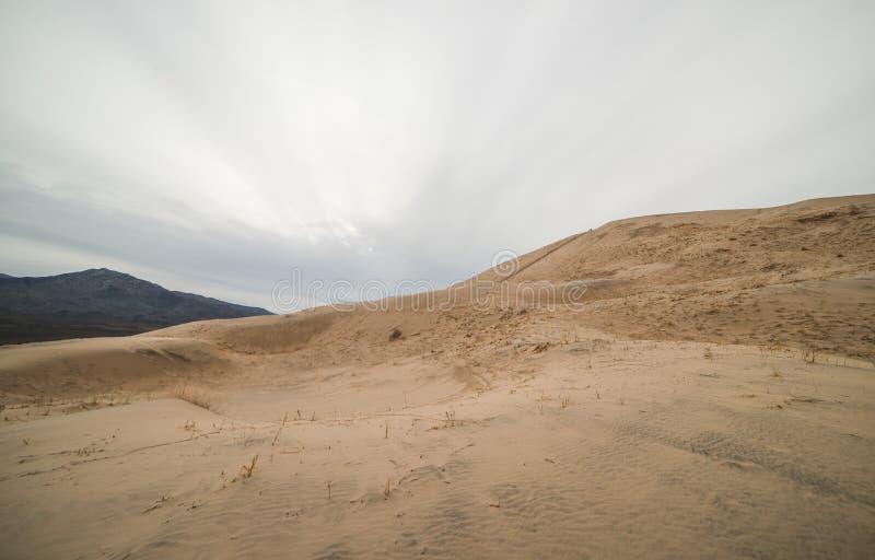 Dunas de areia maciças de Kelso na conserva nacional do Mojave, Califórnia em um dia nebuloso fotografia de stock royalty free