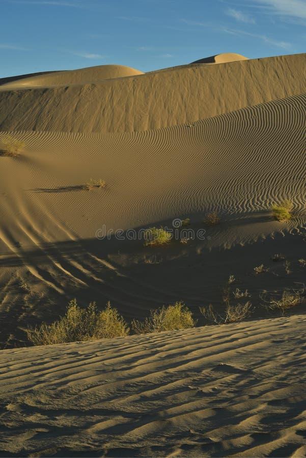 Dunas de areia na área recreacional imperial das dunas de areia, Califórnia foto de stock