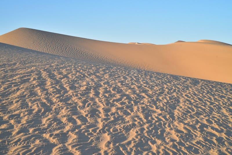 Dunas de areia na área recreacional imperial das dunas de areia, Califórnia imagem de stock royalty free