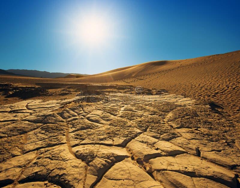 Dunas de areia na luz solar fotos de stock royalty free