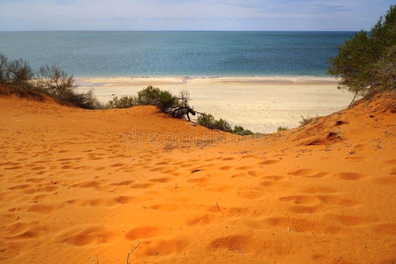 Dunas de areia no cabo Peron fotos de stock