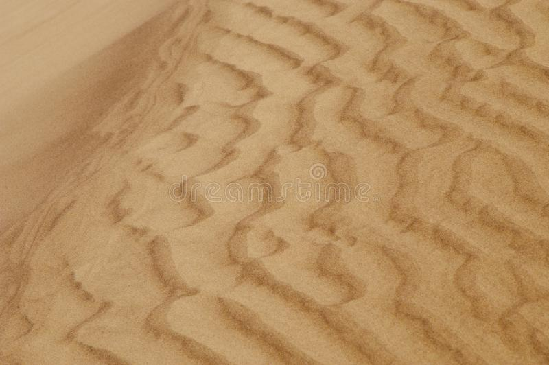 Dunas de areia Rippled fotografia de stock royalty free