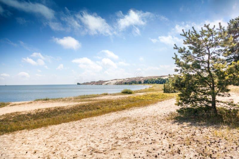 Dunas de arena blancas en el mar Báltico, Nida, Lituania fotografía de archivo libre de regalías