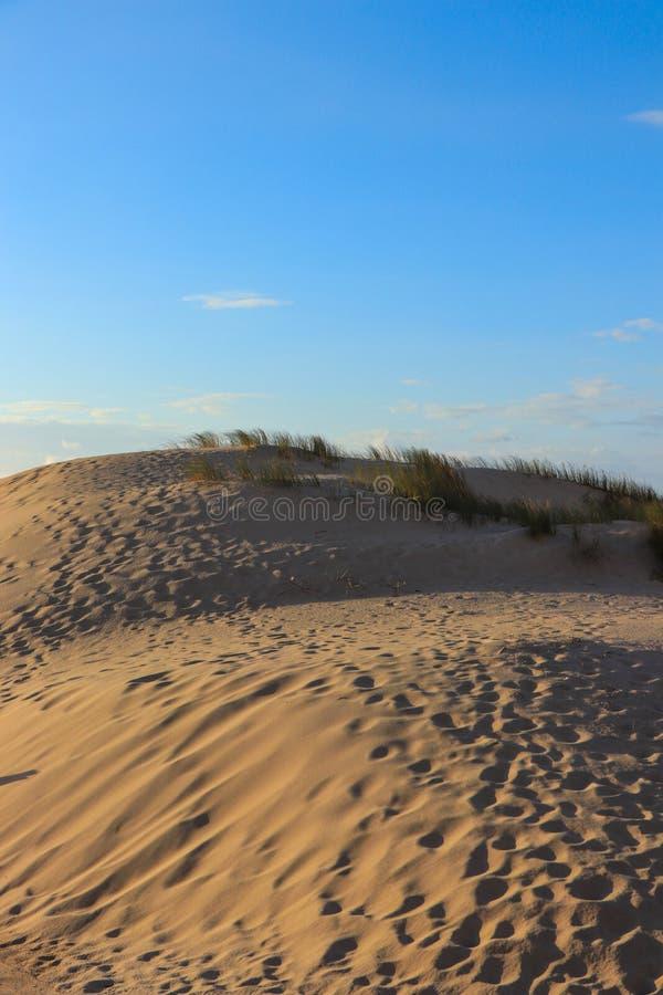 Dunas de arena blancas en una playa fotografía de archivo libre de regalías
