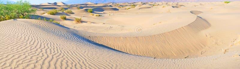 Dunas de arena de Death Valley - panorama fotografía de archivo