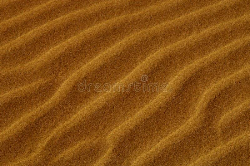 Dunas de arena de Oceana imagen de archivo libre de regalías