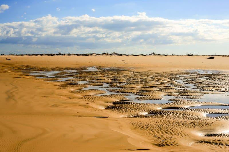 dunas de arena de oro con mini áreas inundadas foto de archivo libre de regalías