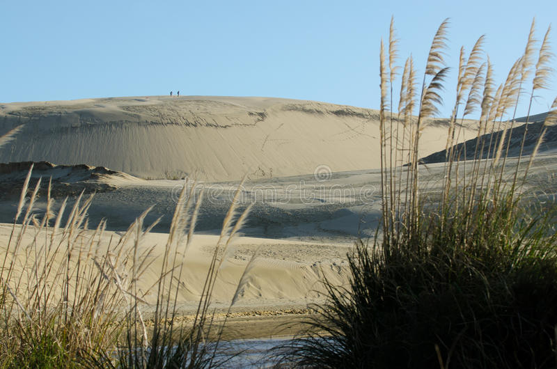 Dunas de arena de Te Paki fotos de archivo