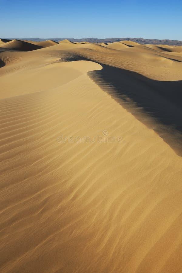 Dunas de arena del desierto de Sáhara con el cielo azul claro. fotos de archivo