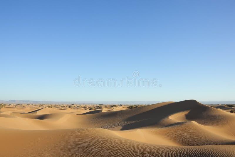 Dunas de arena del desierto del Sáhara con el cielo azul claro. imagen de archivo