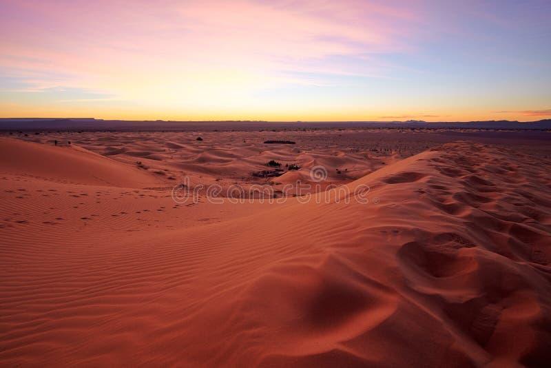Dunas de arena del desierto del Sáhara en la salida del sol imagenes de archivo