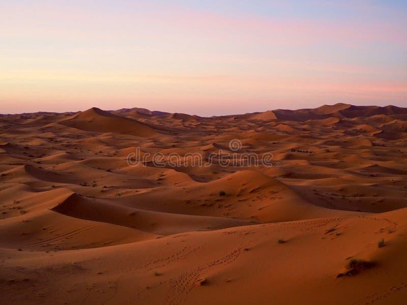 Dunas de arena en el desierto de Sáhara fotos de archivo