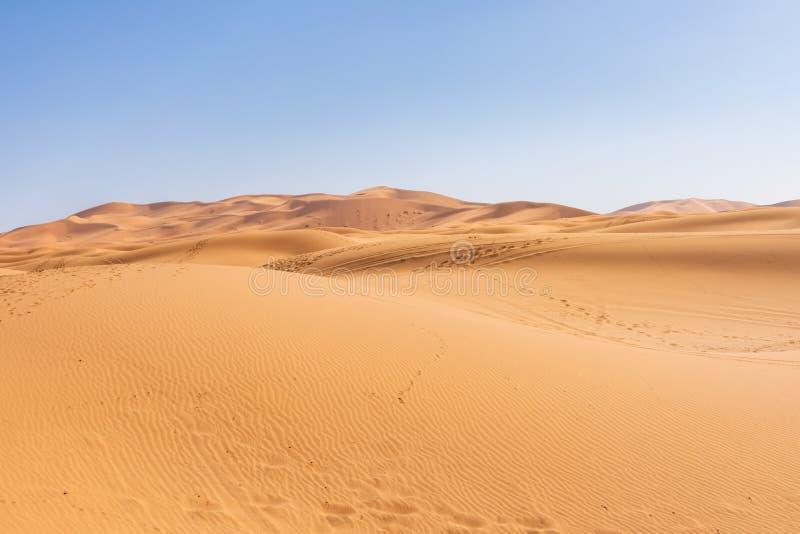 Dunas de arena en el desierto de S?hara imagen de archivo libre de regalías