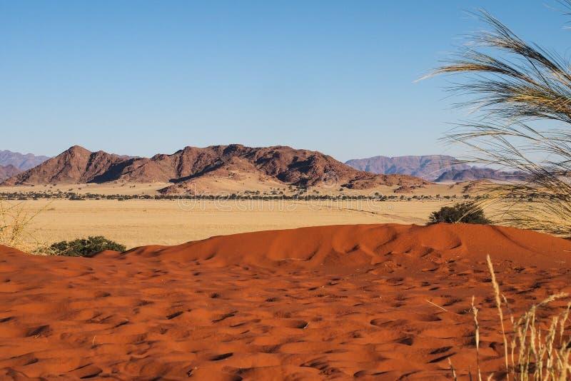 Dunas de arena en la cacerola de Sossusvlei en Namibia ?frica foto de archivo libre de regalías
