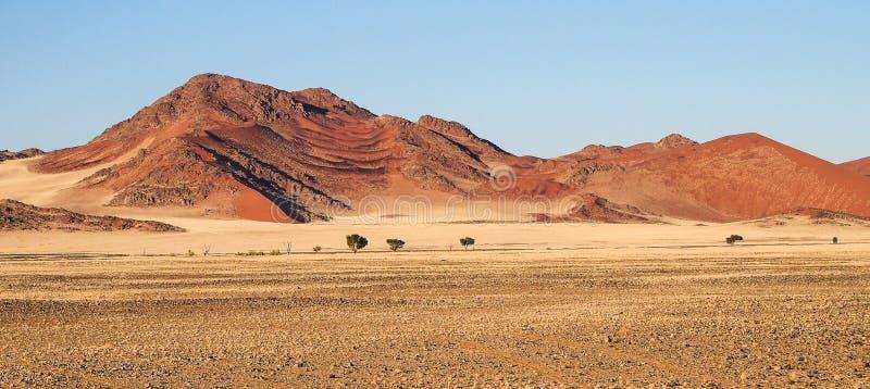 Dunas de arena en la cacerola de Sossusvlei en Namibia ?frica imágenes de archivo libres de regalías