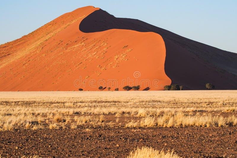 Dunas de arena en la cacerola de Sossusvlei en Namibia ?frica fotos de archivo