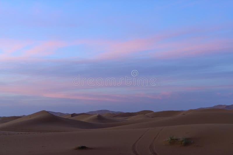 Dunas de arena en la luz eveing foto de archivo