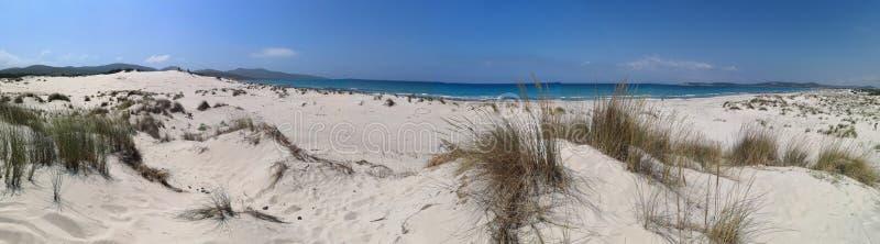 Dunas de arena en la playa de Cerdeña Oporto Pino fotos de archivo libres de regalías