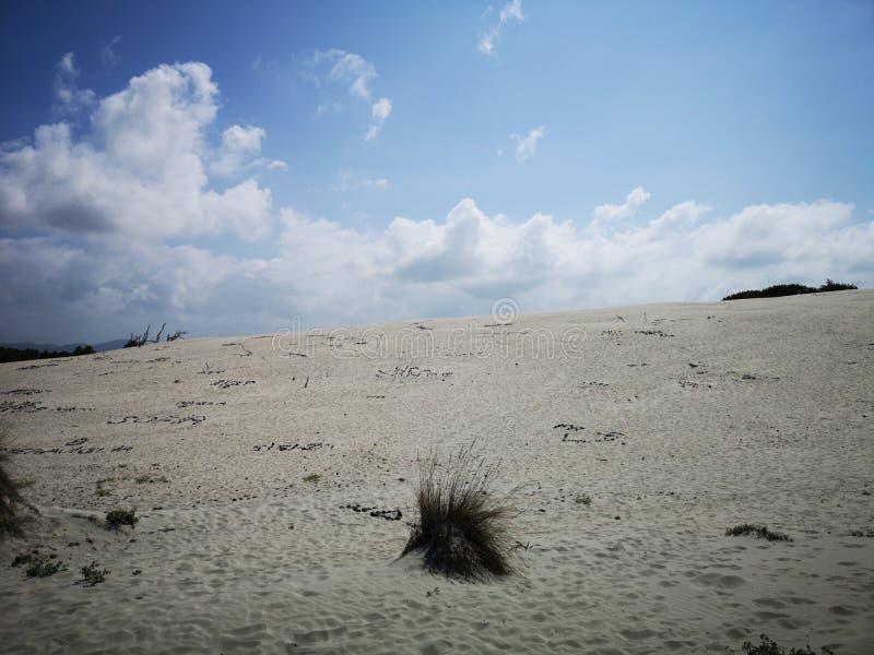 Dunas de arena en la playa de Cerdeña Oporto Pino foto de archivo libre de regalías