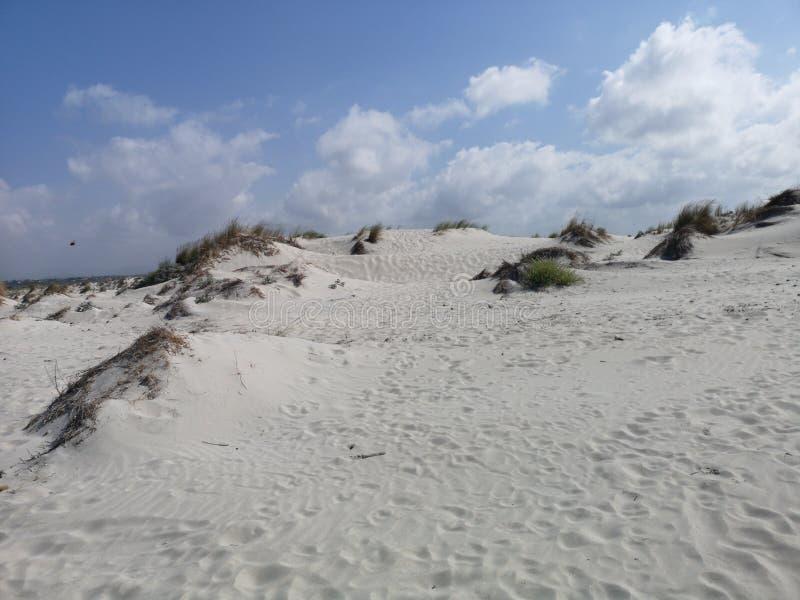Dunas de arena en la playa de Cerdeña Oporto Pino foto de archivo