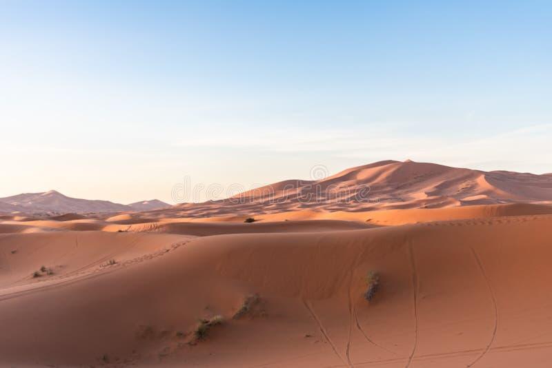 Dunas de arena en Sahara Desert durante la mañana fotografía de archivo