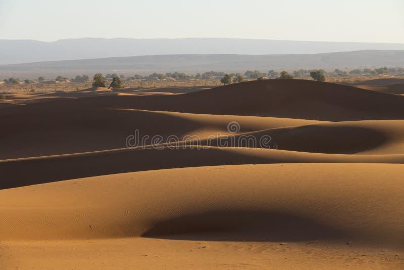 Dunas de arena grandes en desierto del Sáhara imagen de archivo