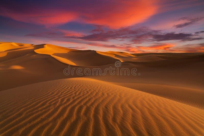 Dunas de arena hermosas en Sahara Desert imagen de archivo libre de regalías