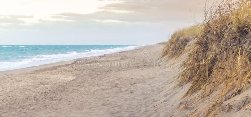 Dunas de arena de la playa fotografía de archivo libre de regalías