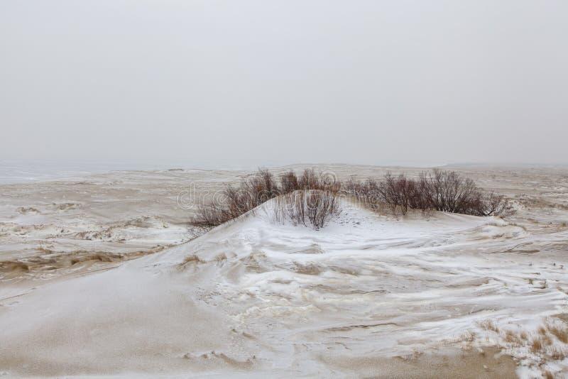 Dunas de arena nevadas fotos de archivo