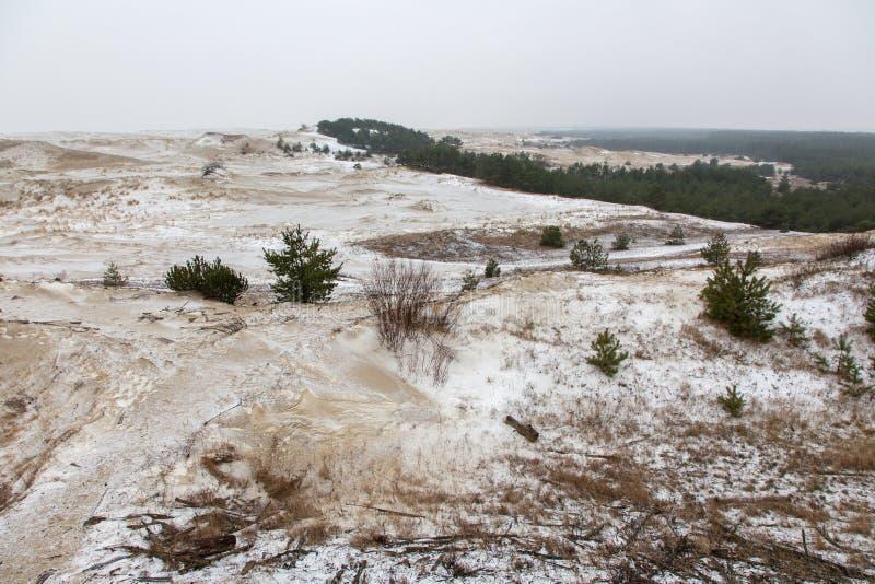 Dunas de arena nevadas foto de archivo