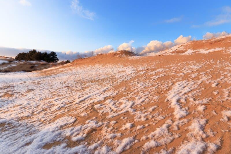 Dunas de arena nevadas del paisaje del invierno foto de archivo libre de regalías