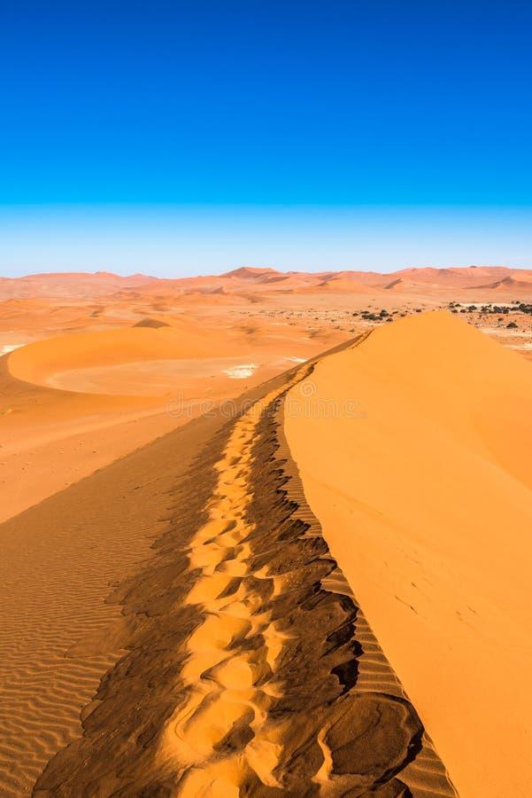 Dunas de arena rojas en Deadvlei, Sossusvlei, parque nacional de Namib-Naukluft, Namibia fotografía de archivo libre de regalías