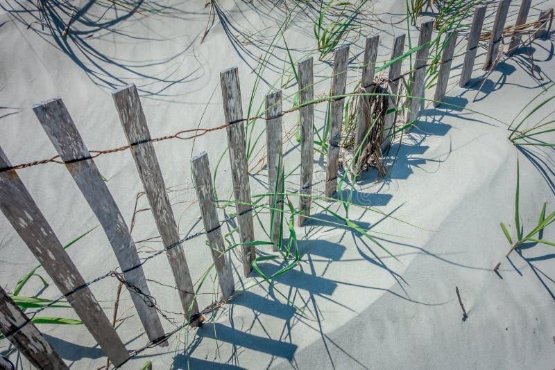 Dunas de arena ventosas herbosas en la playa imagenes de archivo