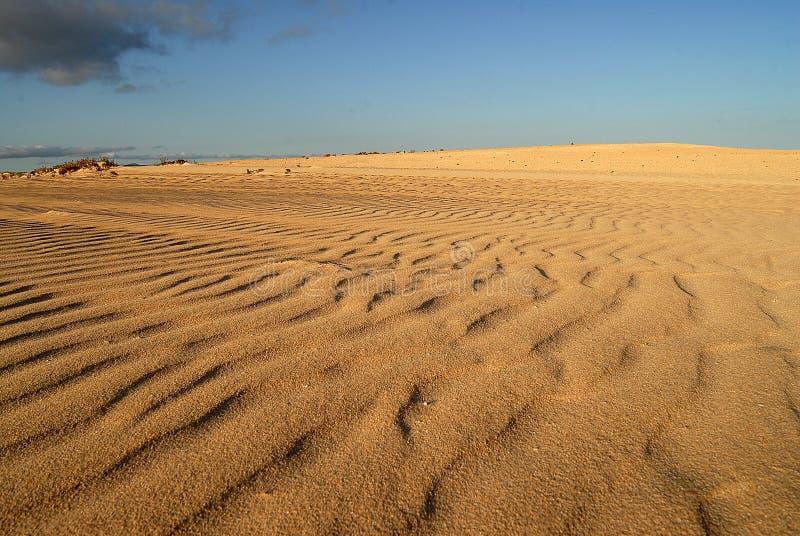 Dunas de Corralejos, en Fuerteventura fotos de archivo