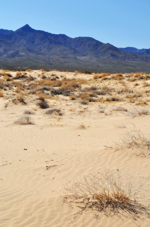 Dunas de Kelso, conserva nacional do Mojave fotos de stock royalty free