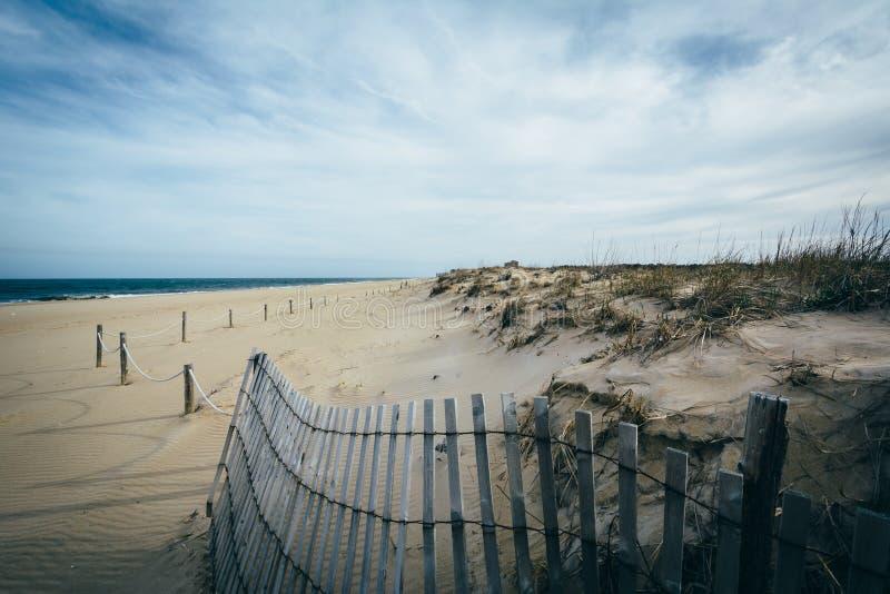 Dunas de la cerca y de arena en el parque de estado de Henlopen del cabo en Rehoboth Bea fotos de archivo