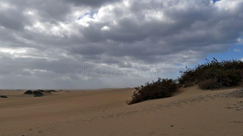Dunas DE Maspalomas - Gran Canaria - Spanje - bij onweer - grijze hemel met heel wat wolken royalty-vrije stock fotografie
